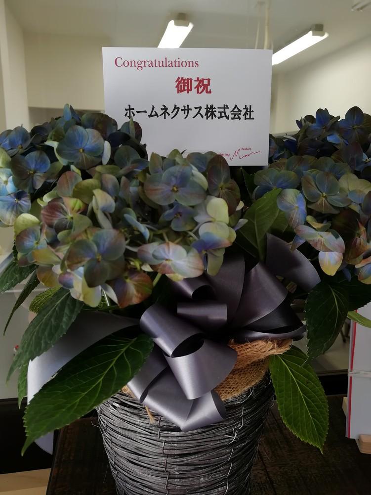 ジンジャーダイヤモンド 直売所オープン