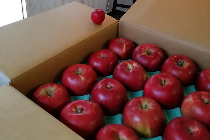 りんごは酸味のある紅玉りんご!